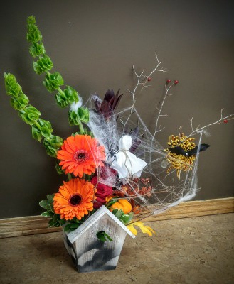 halloween, fall, autumn, happy, cheerful flowers, bouquet, entertainers, gerbera, vase, lumsden, regina, craven, regina beach, buena vista